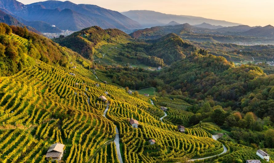 Prosecco kalvos: gamtos, istorijos ir kultūros kraštas, tapęs UNESCO pasaulio paveldu