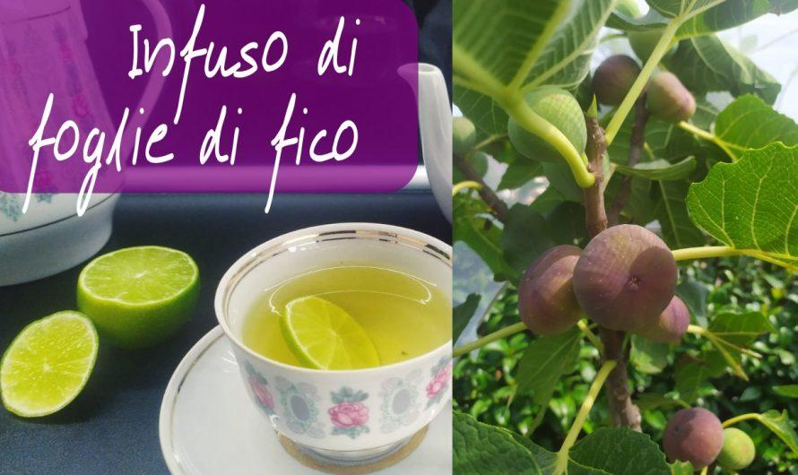 Figų lapų arbata: neįtikėtinos savybės ir kaip ją paruošti